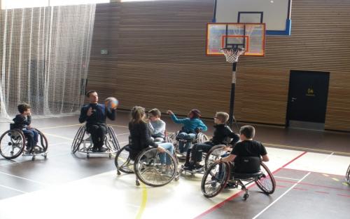 Handi basket 2.jpg